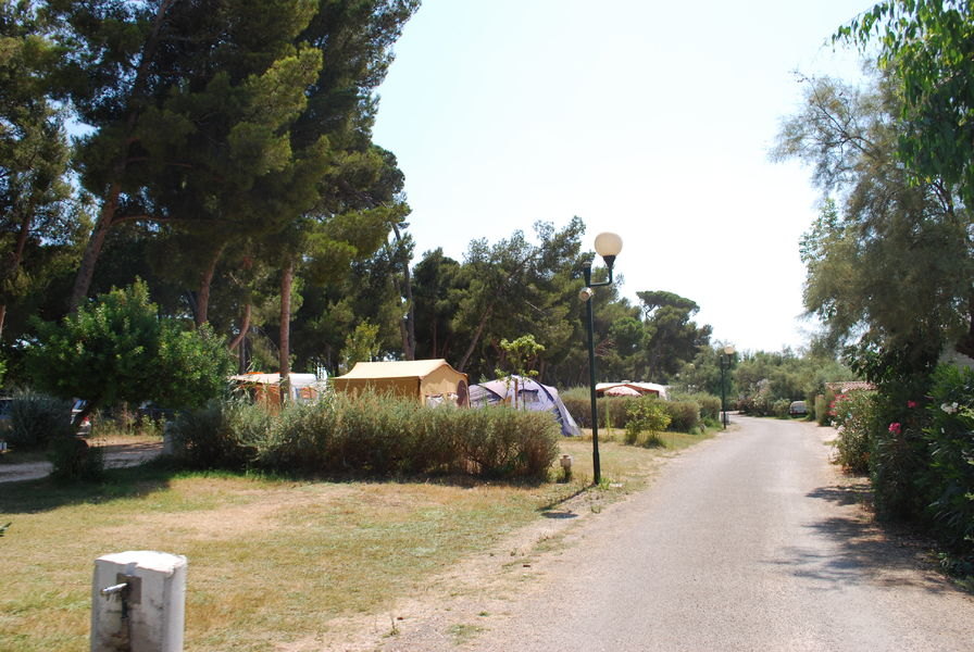 Location mobilhome camping les pins maritimes hyeres