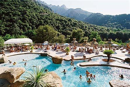 Camping corse oliviers
