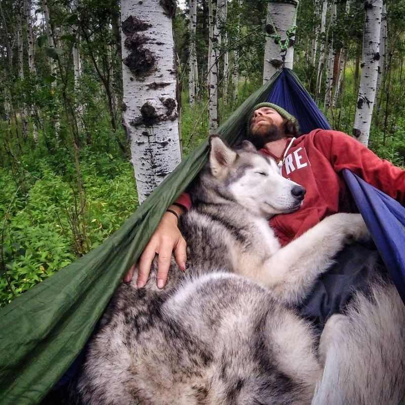 Vacance camping avec son chien vacance camping septembre