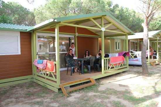 Camping neptuno camping flower