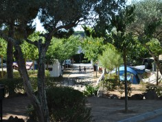 Camping espagne king's