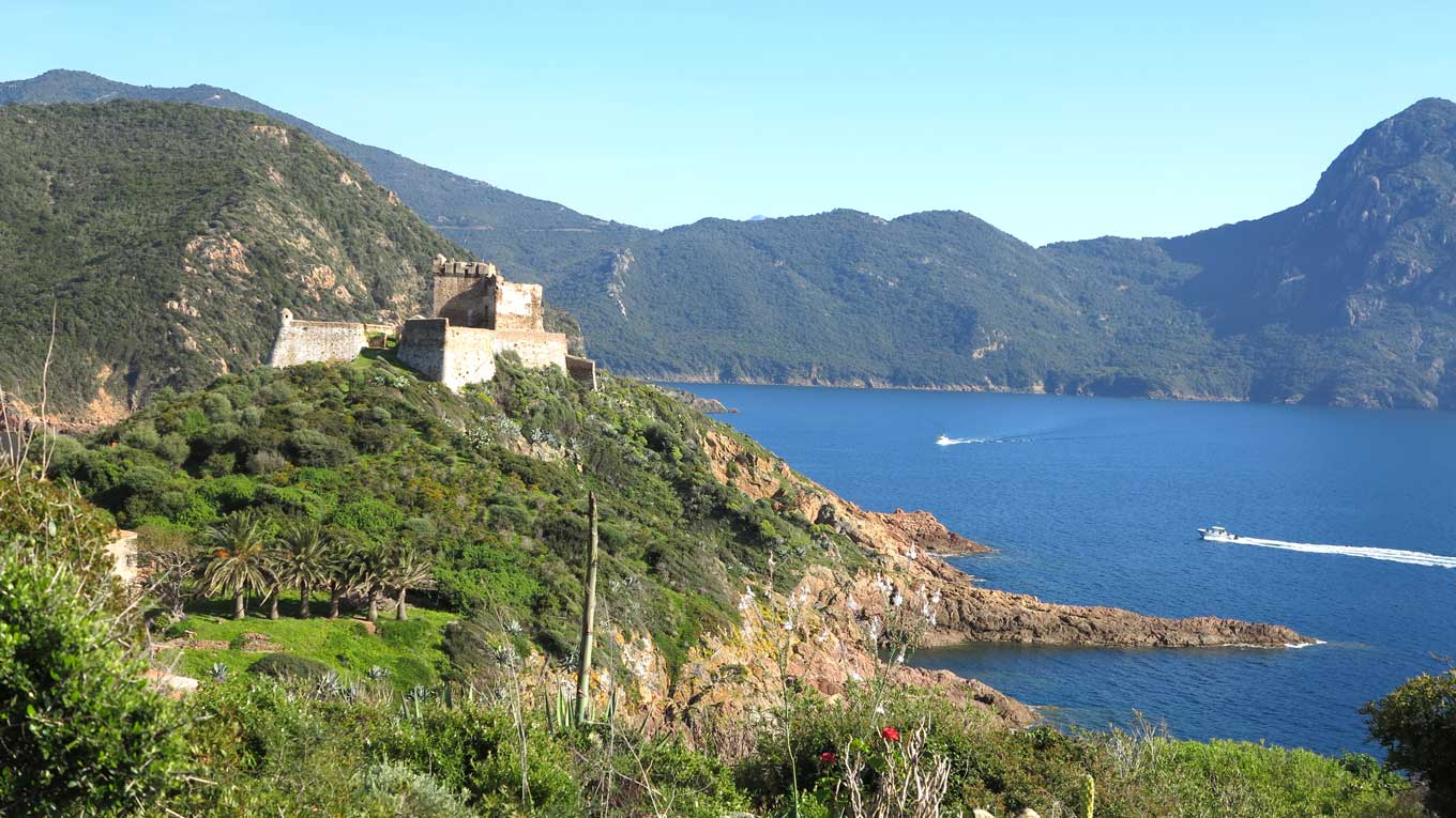 Camping corse avec transport