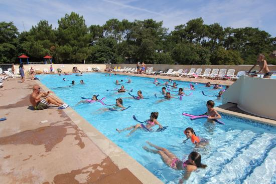 Camping ronce les bains camping corse borgo